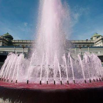 Today's Photo of the Day honors Breast Cancer Awareness Month. Every year, the PA Breast Cancer Coalition teams up with the state Dept. of General Services to turn the Capitol fountain pink. It's a way to honor all those who've been diagnosed with breast cancer, including the more than 232,000 women who will be diagnosed with the disease this year, according to the American Cancer Society.