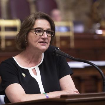 Rep. Maureen Madden makes comments during the House debate on the 2019-20 state budget.