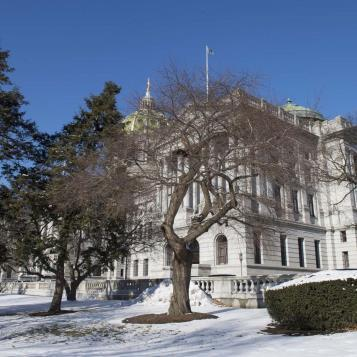 Today's Photo of the Day reminds us just how beautiful the Capitol building can be during the wintertime.